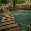 Bridge To Paradise by Ryan Kelehar