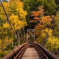 Bridge To Rainbow Falls by Paul Freidlund