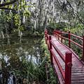 Bridge To Swamp  by John McGraw