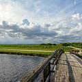 Bridge To The Bayou by Rachel Cash