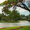 Bridges At Wailoa by Dina Holland