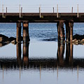 Bridge's Reflection by Michael Lee