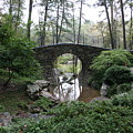 Bridging The Gap by Lynn Michelle