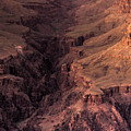 Bright Angel Canyon Grand Canyon National Park by Steve Gadomski