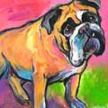 Bright Bulldog Portrait Painting  by Svetlana Novikova