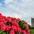 Bright Flowers And 14th Century Irish Castle by James Truett