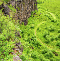 Bright Green Asbyrgi Canyon In Iceland by Matthias Hauser
