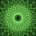 Bright Green Mandala by Jaroslaw Blaminsky