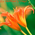 Bright Mother's Day Card by Femina Photo Art By Maggie