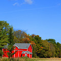 Bright Red Barn by Tina M Wenger