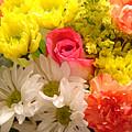 Bright Spring Flowers by Amy Vangsgard