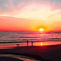 Bright Sunset by Ben and Raisa Gertsberg