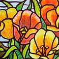 Bright Tulips by Jim Harris