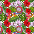 Brightly Colored Tropical Flowers And Ferns  by Elaine Plesser
