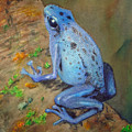 Brilliant Blue Poison Dart Frog by Kerra Lindsey
