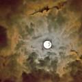 Brilliant Night Sky by Wanda Krack