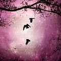 Brilliant Pink Surreal Sky by Gothicrow Images