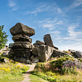 Brimham Rocks by David Head