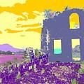 Brimstone Sunset by Ian  MacDonald