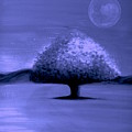 Brisk Silver Moon by Rolly Mouchaty
