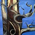 Bristlecone Tree No. 2 by Wanda Pepin
