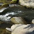 Broad River  by Lisa Kleiner