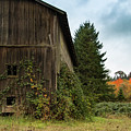 Broad Side Of The Barn by Jean Noren