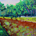 Broadripple Canal by Stan Hamilton