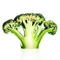 Broccoli Cutaway On White by Johan Swanepoel