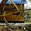 Broken Bicycle by David Lee Thompson
