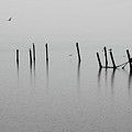 Broken Dock In The Rain by Francesa Miller