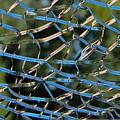 Broken Glass by Julie Niemela