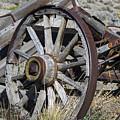 Broken Wagon Wheel by Frank Wilson