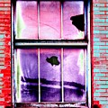 Broken Window by Tim Allen