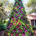 Bromeliad Christmas Tree At Pinewood Estate, Bok Tower by Liesl Walsh