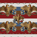 Bronze American Eagles by Rockin Docks Deluxephotos
