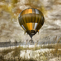 Bronze Beach Ballooning by Betsy Knapp