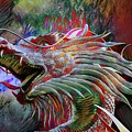 Bronze Dragon Head by Robert Kinser