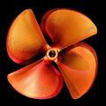 Bronze Spin by David Andersen