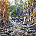 Brook Traversing Wood by Richard T Pranke
