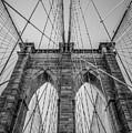 Brooklyn Bridge Goes Up by Brandi Fitzgerald