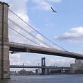 Brooklyn Bridge  by Henri Irizarri