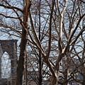 Brooklyn Bridge Thru The Trees by Rob Hans