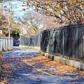 Brooklyn Park In Fall by Jannis Werner