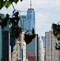 Brooklyn View Of One World Trade Center  by Robert VanDerWal