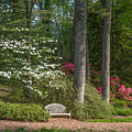 Brookside Gardens 7 by Chris Scroggins