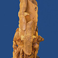 Brother, Carved Out Of A Dead Tree By Scott Alan Malinsky In Twin Lakes, Colorado   by Bijan Pirnia
