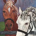 Brown And White Horses by Anne Sands
