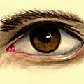 Brown Eye by Michael Vigliotti