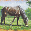 Brown Standing Horse Eating by Martin Davey